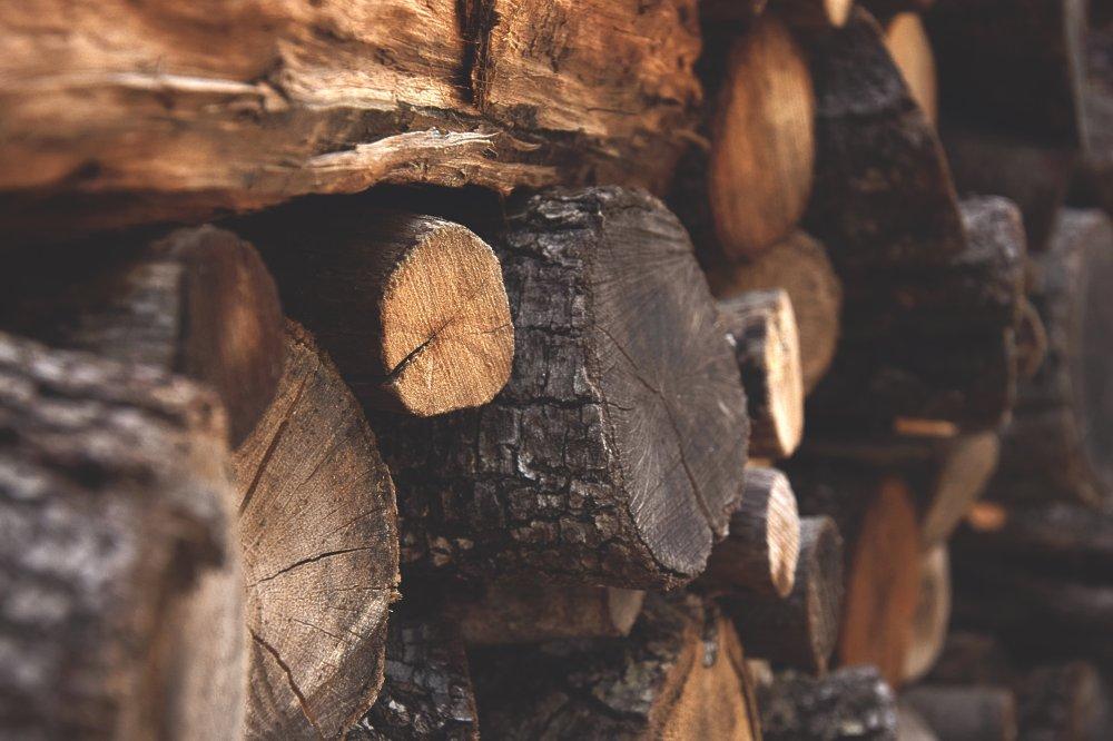 Hvorfor få hjælp til skovservice?