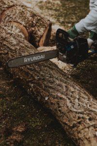 Hvornår kan du hyre skoventreprise i Skjern?